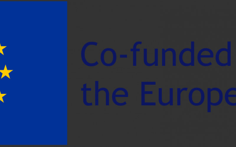 Co-funded by the EU